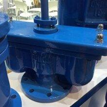 雙口排氣閥QB2(p2)瑞奇廠家直銷圖片