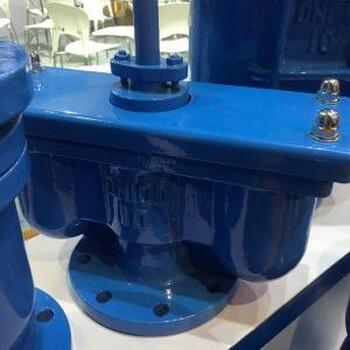 双口排气阀QB2(p2)瑞奇厂家直销