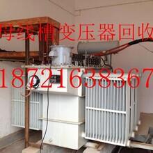 苏州二手锅炉回收//专业回收苏州旧燃气燃油锅炉