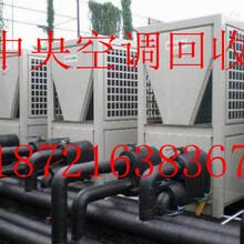 上海虹口區舊中央空調回收//虹口區溴化鋰中央空調回收圖片
