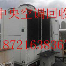 上海長寧區廢舊中央空調回收//長寧區溴化鋰中央空調回收圖片