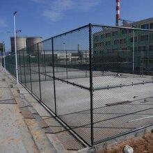 足球场篮球场,体育场,操场,运动场,羽毛球场,网球场,飞机场,养殖,