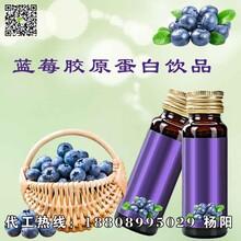 30ml蓝莓胶原蛋白饮品加工oem