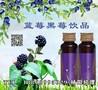 蓝莓黑莓饮品代工ODM图片