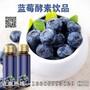 优质蓝莓酵素饮品代工定制图片