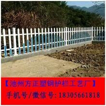 黑龙江省牡丹江pvc塑钢护栏长期大量供货图片
