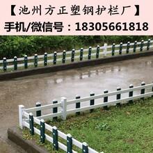 安徽安庆方正护栏_pvc围墙护栏现货低价图片