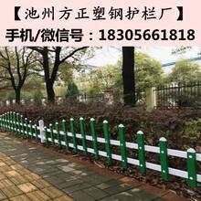 太湖pvc护栏厂_墨绿色护栏比价格更比服务图片