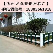安徽安庆方正护栏_护栏比价格更比服务图片