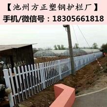 太湖县(安庆)护栏比价格更比服务图片
