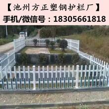 安徽安庆方正护栏_院墙护栏栅栏现货低价图片