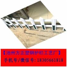 pvc绿化护栏_pvc绿化护栏批发价格图片