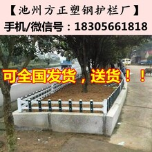 昆明市栅栏围栏隔离栏-护栏送立柱图片