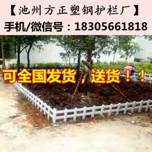 合肥肥东县草坪护栏批发50公分-40公分-30公分图片