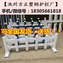 泰州海陵区菜园栅栏/庭院护栏白色/蓝色/木纹色图片