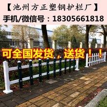 安徽护栏行情/芜湖无为县pvc护栏图片