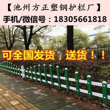 衡阳市衡阳县pvc栅栏_墨绿色/木纹色/纯白色图片