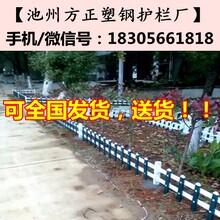 六安护栏公司_六安霍山pvc塑钢护栏_pvc绿化护栏-六安草坪护栏图片