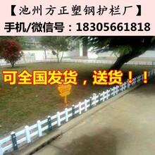 桐城围墙护栏_pvc护栏型材_绿化护栏院墙围栏图片