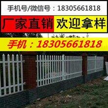 全椒pvc塑钢护栏图片