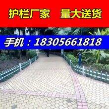 吉安井岡山pvc草坪護欄-高度和顏色可選圖片