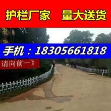 萍乡湘东区pvc栅栏塑钢护栏供应商图片