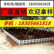 抚州金溪县草坪护栏塑钢护栏供应商图片