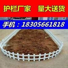 安徽潜山县新农村门前栅栏,草坪护栏颜色选择图片