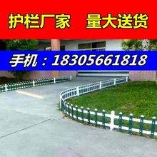 江西浮梁县塑钢花池围栏——墨绿色护栏图片