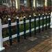 子长县pvc绿化围栏-高度30-40-50公分