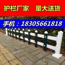 pvc護欄價格//龍巖長汀縣學校圍墻護欄/-規格4620與3656圖片