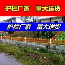 pvc护栏型材//丽水莲都区围墙护栏/-新农村需求量大图片