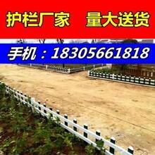 护栏//舟山嵊泗县绿化pvc护栏/-市场价格-大量-团买图片
