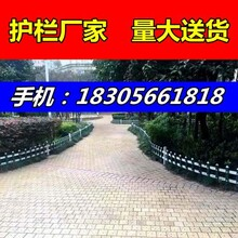 護欄公司//三明寧化縣公園市政花壇護欄/-市場價格-大量-團買圖片