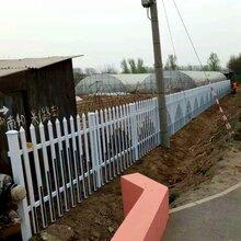 可提供样品:湖南郴州永兴pvc护栏,花坛花池围栏/马路中间使用图片