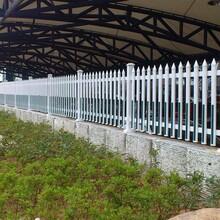 河源龙川县学校景区围栏/价格:图片