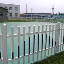 北海铁山港1.2米塑钢护栏/-pvc护栏厂图片