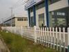 pvc圍墻護欄:黃岡黃梅縣pvc圍墻護欄-新農村需求量大