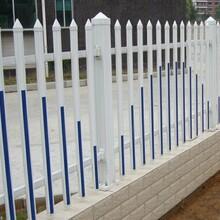 诚招代理商:浙江宁波海曙区塑钢院墙围栏/-样式选择,提供样品图片