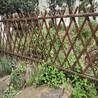 合肥瑶海菜园竹篱笆原色竹子护栏防竹防木栏杆