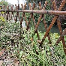 竹制品供应:玉林竹围栏菜园小栅栏图片