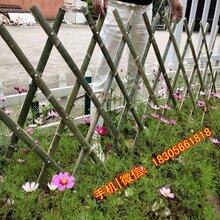 淮北杜集区竹片栏杆竹子围栏优游注册平台厂栅栏图片