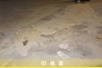 旧地坪修补翻新/密封固化剂地坪