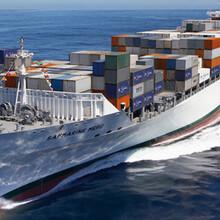 深圳到澳大利亚海运双清包税专线