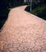 专业承接全国彩色压花地坪压膜地坪混凝土压印路面材料施工