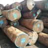 求购非洲刚果黑鸡翅木原木、板材