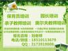 北京考保育员资格证去哪里考考保育员资格证需要培训吗