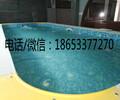 衡水水育早教游泳池大型钢结构组装池儿童游泳池价格