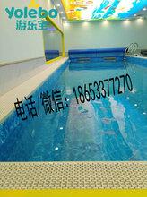 陜西榆林供應兒童游泳池設備室內大型水育早教游泳池圖片