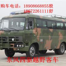 淮南东风44四驱越野客车,东风四驱越野运兵客车图片